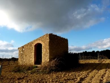 Barraca a Subirats - Josep Massana
